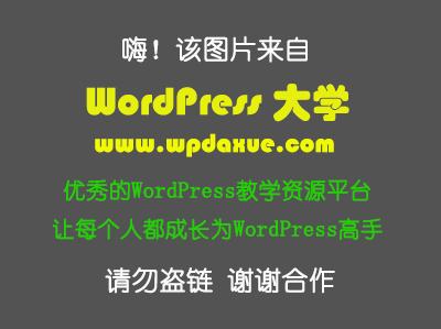 wpdaxue.com